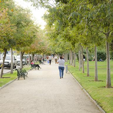 Plaza las Lilasc